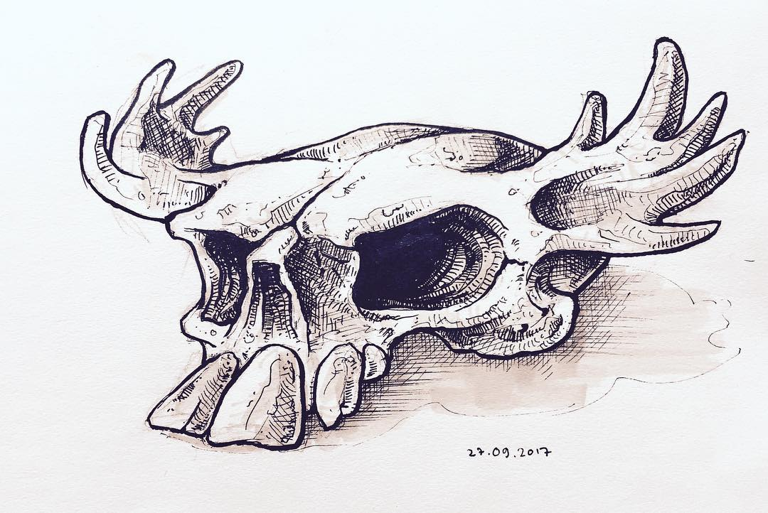 Almost daily skull 0013
